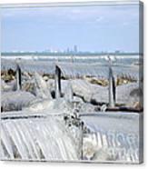 Natures Ice Sculptures 12 Canvas Print