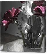 Pink Gerbera Floral Still Life Canvas Print