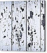 Old Painted Wood Abstract Canvas Print