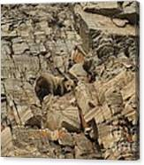 On The Edge Of Glory Canvas Print