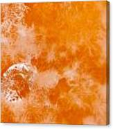 Orange 2 Canvas Print