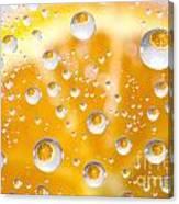 Orange Water Drops Canvas Print