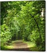 Path To Serenity Canvas Print