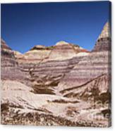 Petrified Forest Blue Mesa Canvas Print