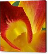 Photograph Of A Hope Orchid Flower Canvas Print