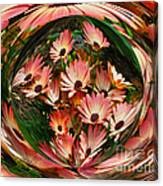 Pink African Daisies Canvas Print