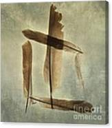 Plumage Canvas Print