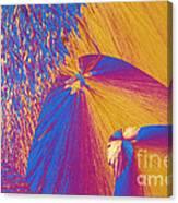 Polypropylene Canvas Print