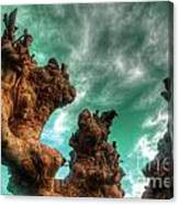 Pruned  Canvas Print