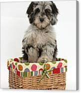 Puppy In A Basket Canvas Print