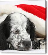 Puppy Sleeping In Christmas Hat Canvas Print