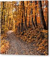 Ramble On Canvas Print