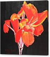 Red Canna Canvas Print