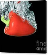 Red Pepper Falling Into Water Canvas Print