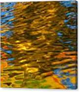 Reflection In Water. Canvas Print