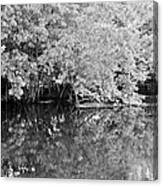 Reflections On The North Fork River In Black And White Canvas Print