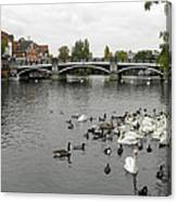 River Thames At Windsor Canvas Print