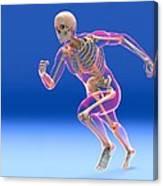Running Skeleton In Body, Artwork Canvas Print