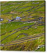 Rural Landscape On Dingle Peninsula Canvas Print