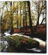Sally Gap, County Wicklow, Ireland Canvas Print