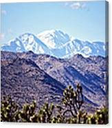 San Gorgonio Mountains Canvas Print