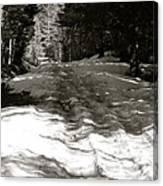 Snow In April Canvas Print