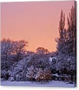Snow Scene At Sunrise Canvas Print