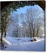 Snow Through The Bridge Canvas Print