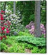Spring Forest Canvas Print