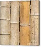 Straight Bamboo Poles Canvas Print