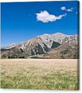 Summer Landscape Blue Sky  Canvas Print