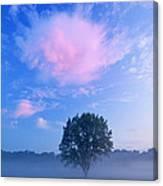 Summer Meadow At Dawn Canvas Print