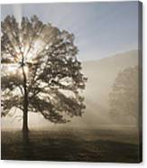 Sunrise In Cades Cove Canvas Print
