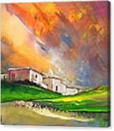 Sunset 25 Canvas Print