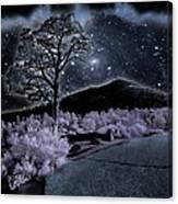 Sunset Crater Canvas Print