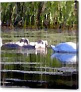 Swans In Hue Pallet Canvas Print