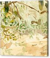 The Breeze Between Canvas Print