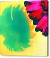 The Gerbera Canvas Print