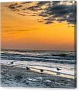 The Wintery Feeling Beach At Sunrise Canvas Print