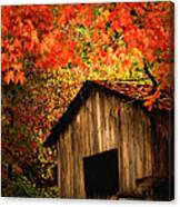 The Wood Shed  Canvas Print