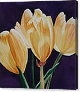 Tip Toe Canvas Print