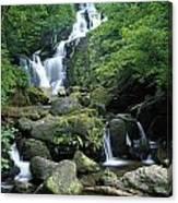 Torc Waterfall, Killarney National Canvas Print