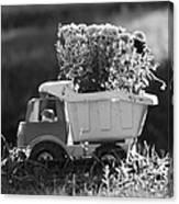 Toy Truck Planter Canvas Print