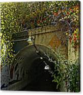 Tunnel At Crystal Cove Canvas Print