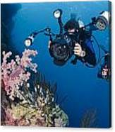 Underwater Photography Canvas Print