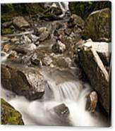 Unnamed Waterfall Along South Tongass Canvas Print