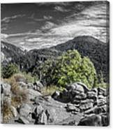 Upper View Canvas Print
