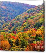 View Along The Highland Scenic Highway Canvas Print