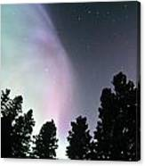View Of Trees And Northern Lights Canvas Print