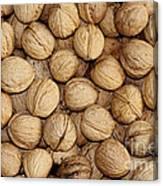 Walnuts Canvas Print